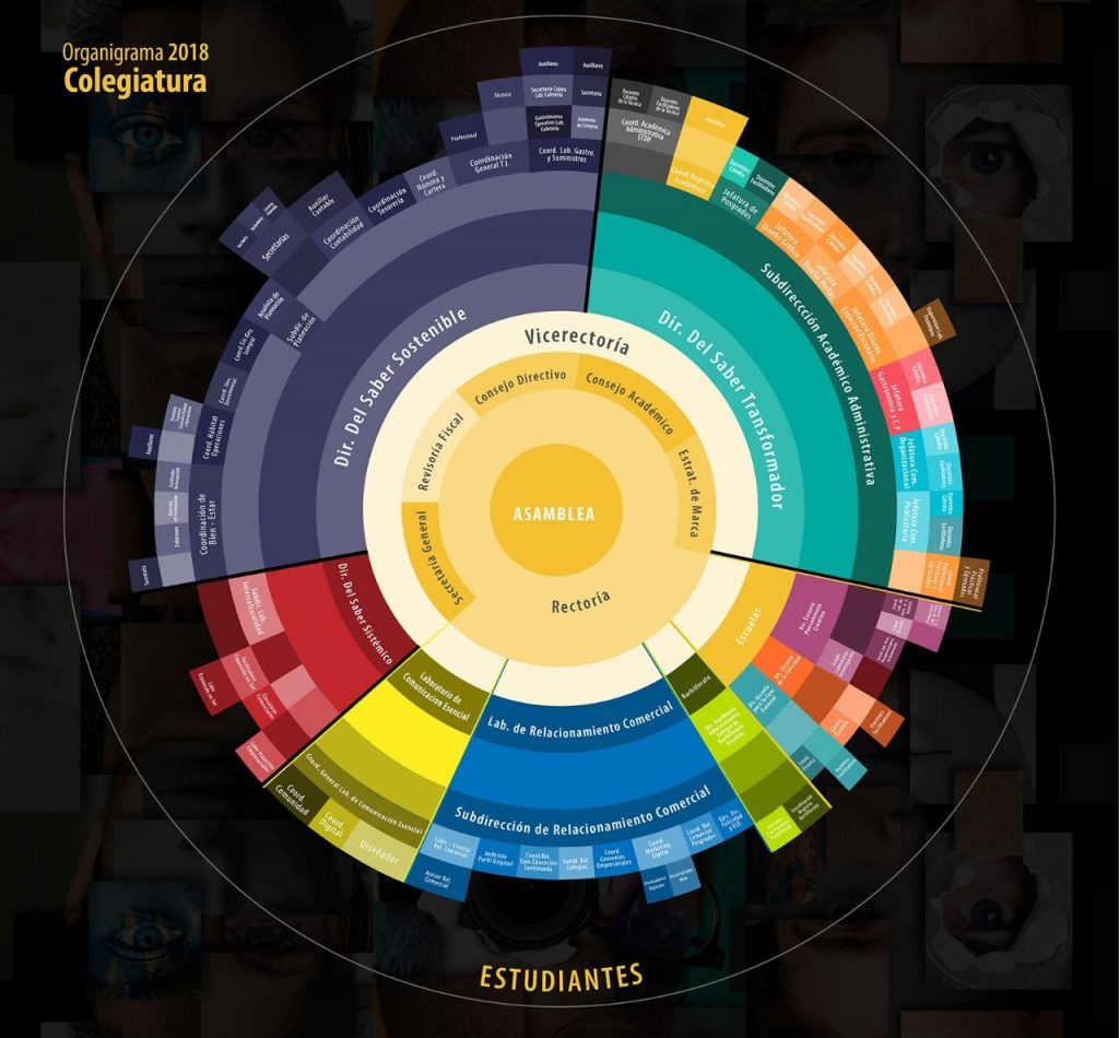 Estructura Organizacional - Organigrama